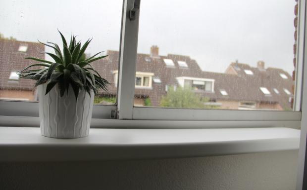 binnenafwerking vensterbank